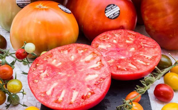 Tomate Huevo de Toro del Valle del Guadalhorce